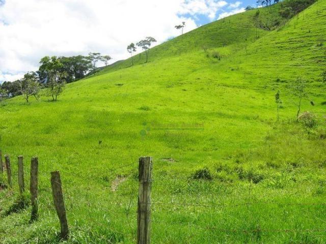 Fazenda rural à venda, Sebastiana, Teresópolis. - Foto 15