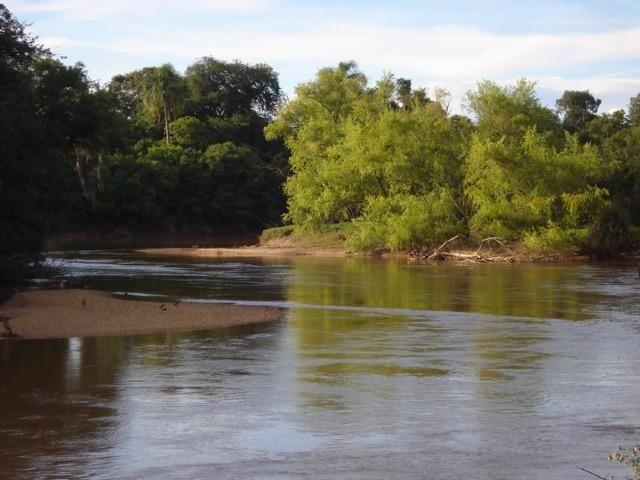 Lindo Sítio com fundos para o Rio da Várzea - Foto 14