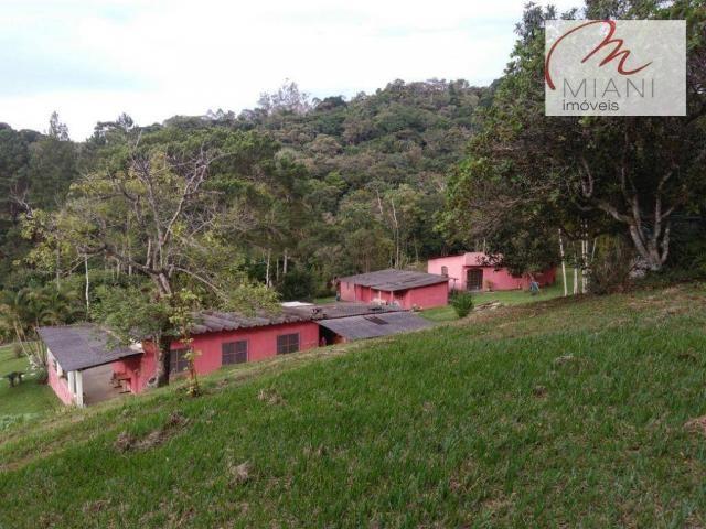 Chácara residencial à venda, Jardim das Palmeiras, Juquitiba. - Foto 4