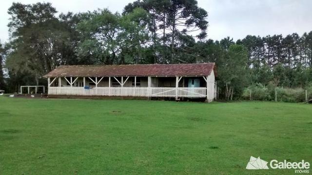 Chacara|Área com 60.000m² em São José dos Pinhais - Foto 14