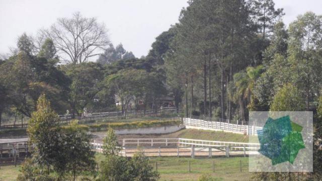 Haras à Venda em Sarapuí/SP - Foto 9