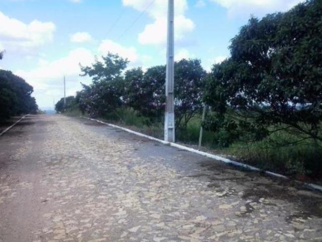 Fazendinha alto luxo 20 mil em Condominio Fechado Portal do Horizonte - Foto 7