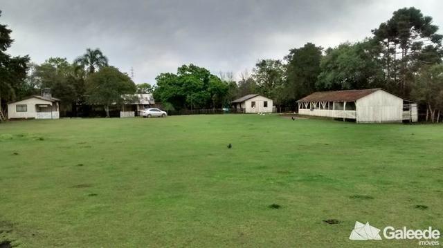 Chacara|Área com 60.000m² em São José dos Pinhais - Foto 6