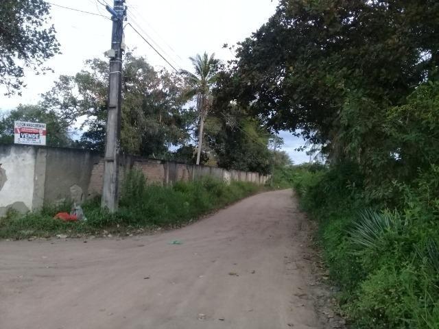 Excelente área de terra no povoado de boa hora, próximo ao parque viver tomba - Foto 9