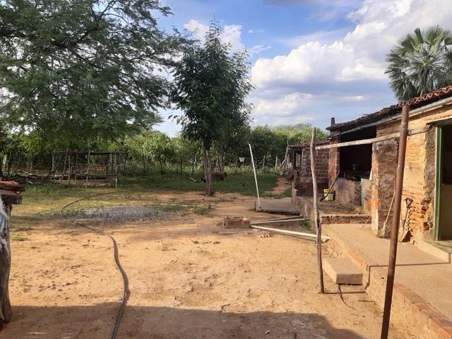 Vendo fazenda em crateus ce ou troco - Foto 4