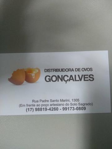 Distribuidora de ovos - Foto 5