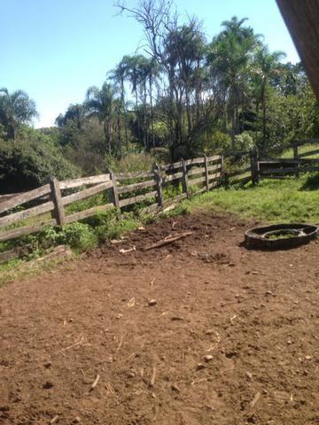 Fazenda caruru Valor R$ 1,400,000