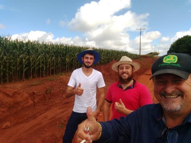 Alugo Fazenda p Arrendamento no Ms 1000 há - Foto 3