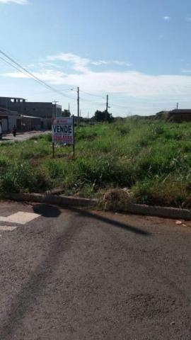 Terreno à venda em Cardoso, Aparecida de goiânia cod:AR2334 - Foto 6