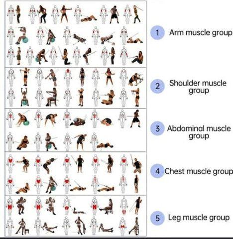 Kit 16 Peças 06 Elásticos Extensores Musculação Pylates CrossFit Funcional - Foto 3