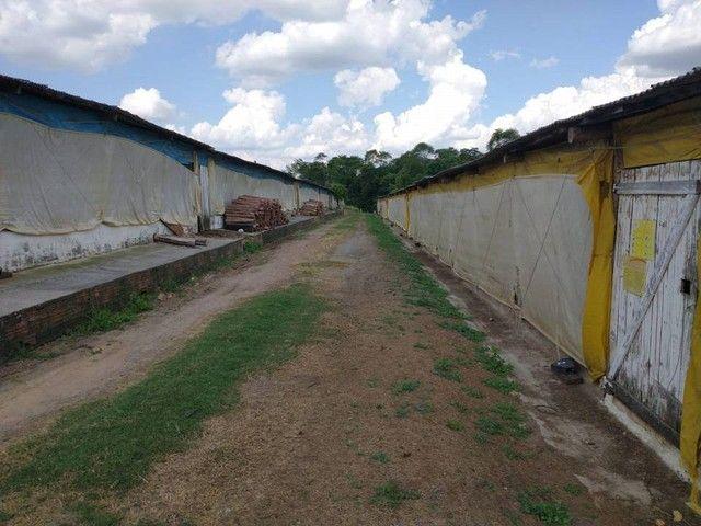 Sítio, Chácara a Venda com 12.100 m², 2 granjas com 13 mil aves cada em Porangaba - SP