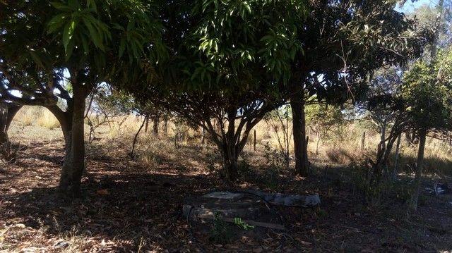 Sítio, Fazenda, Chácara a Venda com 32.000m² com 3 quartos - Porangaba, Bofete, Torre de P - Foto 19