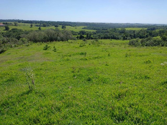 Sítio, Chácara, Terreno a Venda com 77.500 m² 3,2 Alqueres em Bairro Rural - Porangaba - S - Foto 14