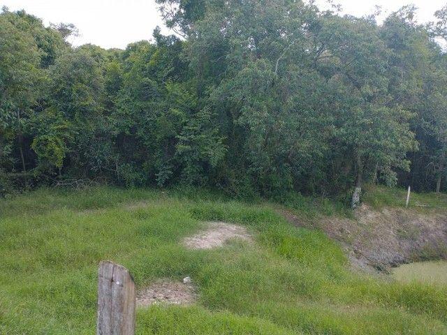 Sítio, Chácara a Venda com 12.100 m², 2 granjas com 13 mil aves cada em Porangaba - SP - Foto 13
