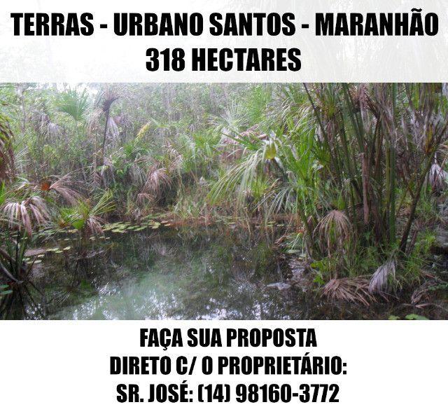 Terras / Fazenda - Urbano Santos (MA) - 318 Ha - Faça Sua Proposta - Foto 10