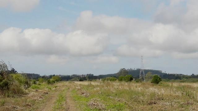 Terreno em Sangão próximo ao acesso do Aeroporto Regional - Foto 4