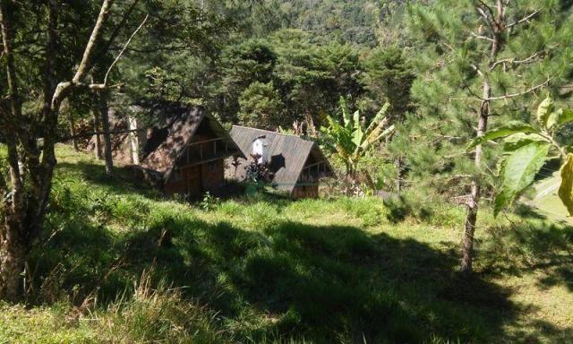 Sítio rural à venda, Albuquerque, Teresópolis. - Foto 6