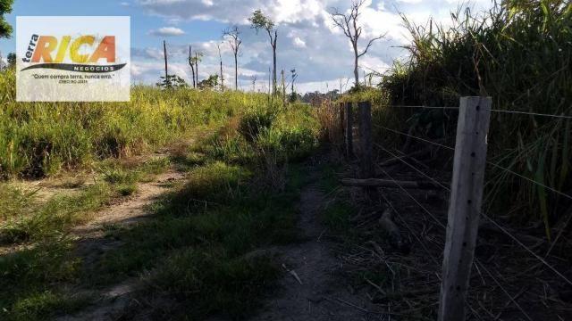 Fazenda com 140 Hectares em Candeias do Jamari/RO à venda, a 14 km da cidade - Foto 18