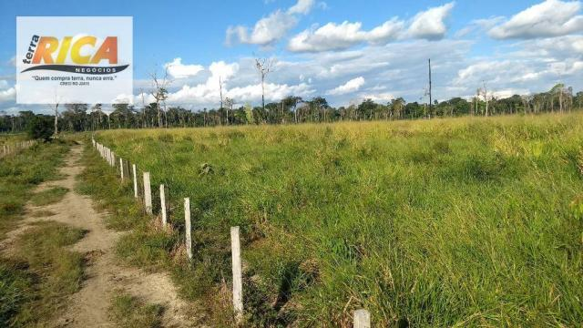 Fazenda com 140 Hectares em Candeias do Jamari/RO à venda, a 14 km da cidade - Foto 12