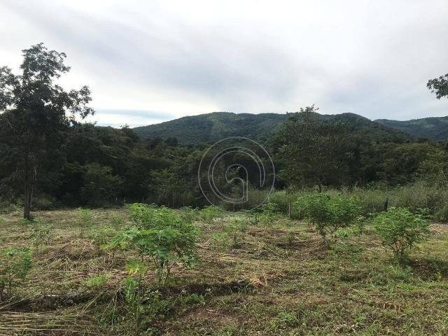 Sítio 11,8 ha na região distrito da guia - Foto 13