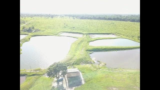 Oportunidade Única - Vendo Fazenda 1000 ha - Foto 4