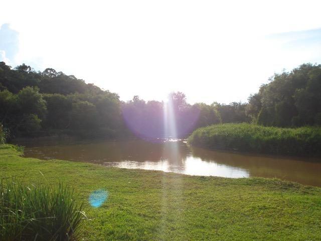 Lindo Sítio com fundos para o Rio da Várzea - Foto 15