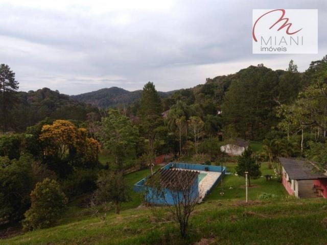 Chácara residencial à venda, Jardim das Palmeiras, Juquitiba. - Foto 16