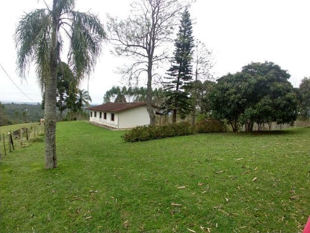 Fazenda em Campo Largo Bairro São Silvestre - Foto 16