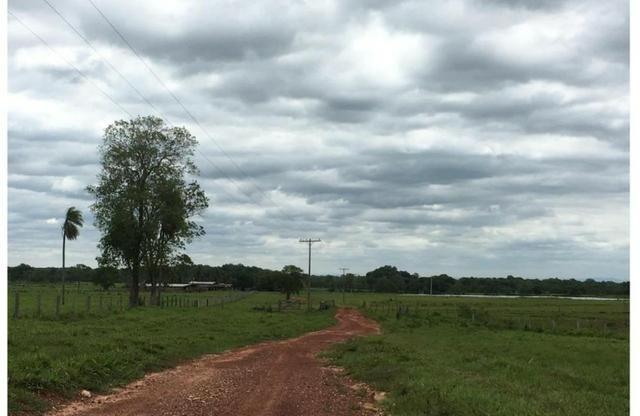 Fazenda Excelente Fazenda no Município de Poconé 16520412 hectares - Foto 6