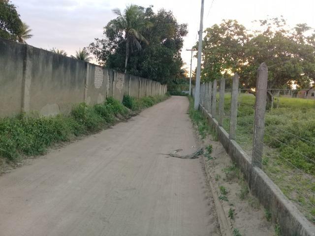 Excelente área de terra no povoado de boa hora, próximo ao parque viver tomba - Foto 7