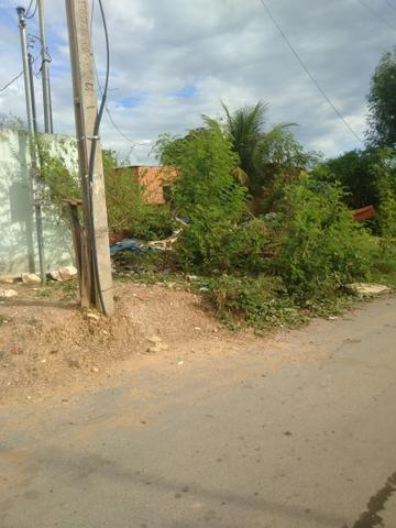 Terreno bairro Dr Fábio 1 - Foto 2