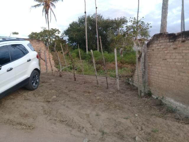 Excelente área de terra no povoado de boa hora, próximo ao parque viver tomba - Foto 2