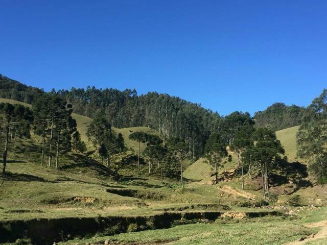 Fazenda anitápolis - Foto 8