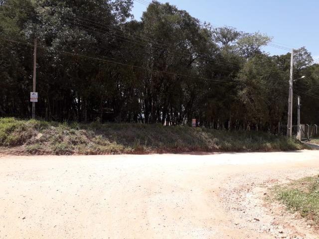 Chácara com 39.631m2 em Campina Grande do Sul - Aceito Imóvel Com Volta - Foto 16