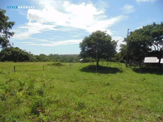 Fazenda à venda, 800000 m² por R$ 550.000,00 - Zona Rural - Nossa Senhora do Livramento/MT - Foto 8