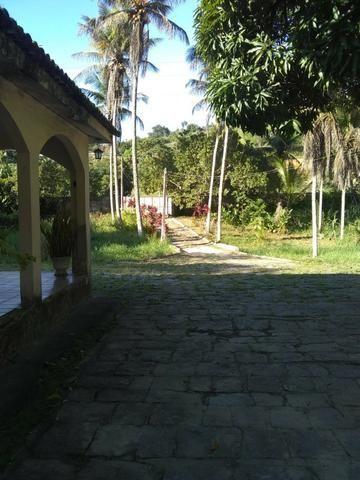 Vendo Chácara em Ribeirão PE - 10 hectares - Foto 2