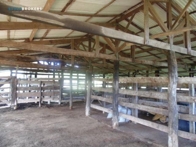 Fazenda à venda, 800000 m² por R$ 550.000,00 - Zona Rural - Nossa Senhora do Livramento/MT - Foto 13