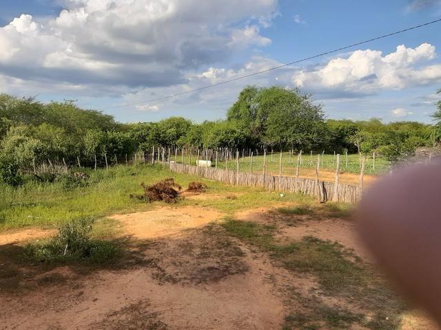 Vendo fazenda em crateus ce ou troco - Foto 5