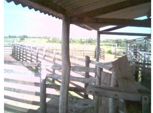 Fazenda Excelente Fazenda no Município de Poconé 16520412 hectares - Foto 8