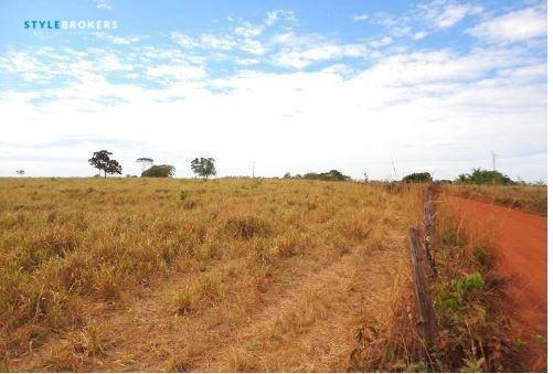 Fazenda em jangada - MT - Foto 13