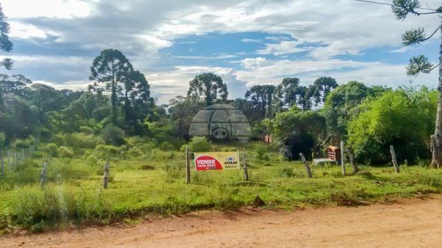 Terreno à venda em Boqueirão, Guarapuava cod:142198 - Foto 3