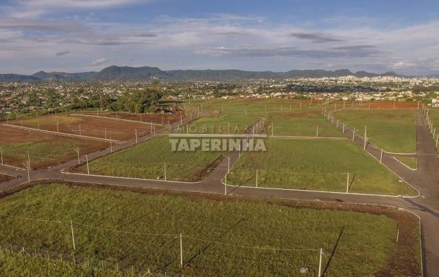 Terreno à venda em Pinheiro machado, Santa maria cod:10767 - Foto 5