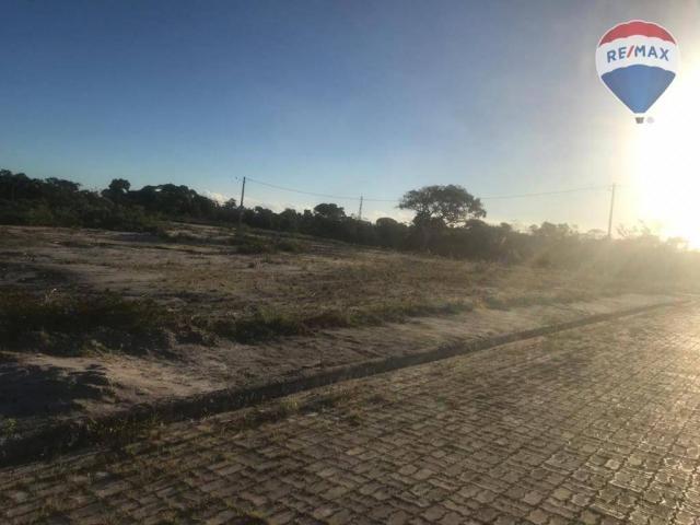 Terreno à venda, 716 m² por r$ 120.000 - residencial d'ville - porto seguro/ba - Foto 4