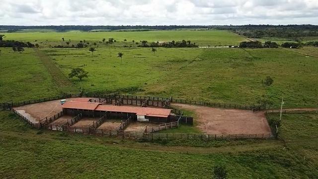 Fazenda em Parecis - RO. 4.000 hectares - Foto 12
