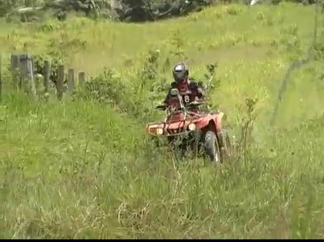 Área de terra com 20 hectares com 80 de pasto