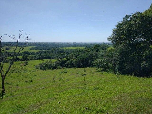 Terreno, Sítio, Chácara a Venda com 60500 m² 2,5 Alqueres em Bairro Rural - Porangaba - SP - Foto 7