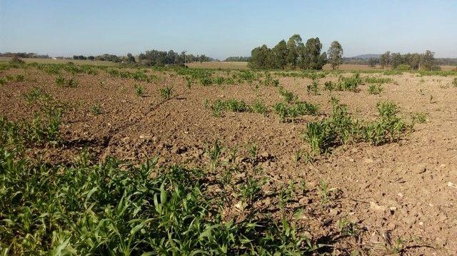 Fazenda, Sítio, Chácara, para Venda em Porangaba com 72.600m² 3 Alqueres, Plano, Limpo, 10 - Foto 5