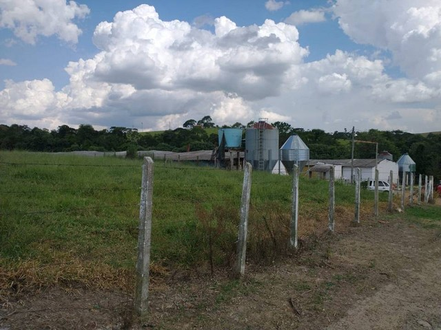 Sítio, Chácara a Venda com 12.100 m², 2 granjas com 13 mil aves cada em Porangaba - SP - Foto 3