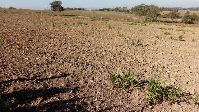 Fazenda, Sítio, Chácara, para Venda em Porangaba com 72.600m² 3 Alqueres, Plano, Limpo, 10 - Foto 16