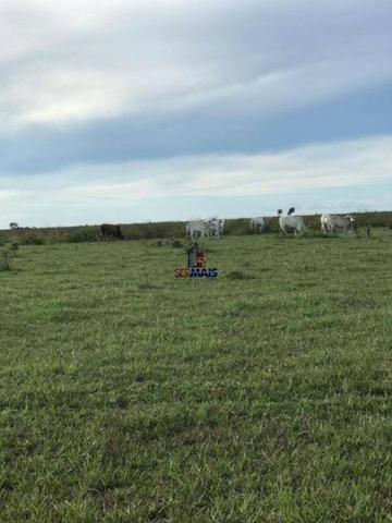 Fazenda a venda no estado do mato grosso - Foto 17